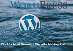 Wordpress is very powerful
