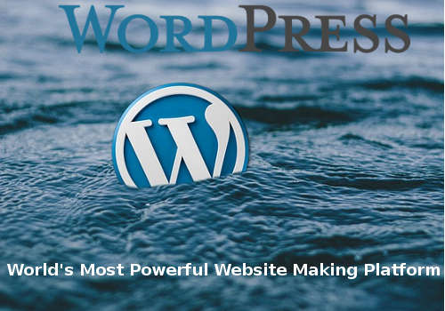 WordPress – The First Choice for Website Development.