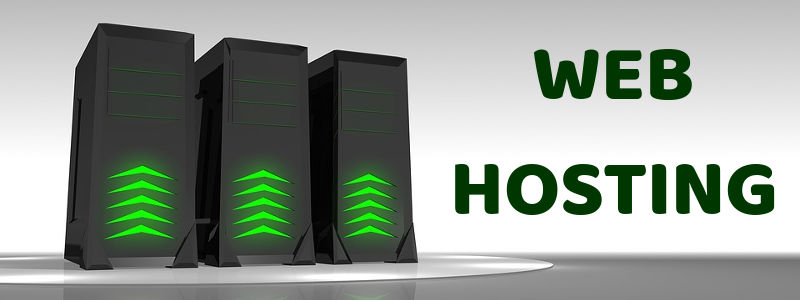 Web Hosting for Every Successful Website